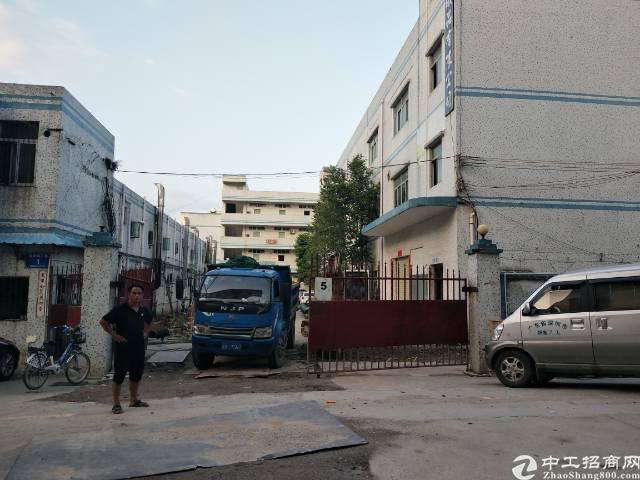 龙岗嶂背新出厂房楼上400平出租