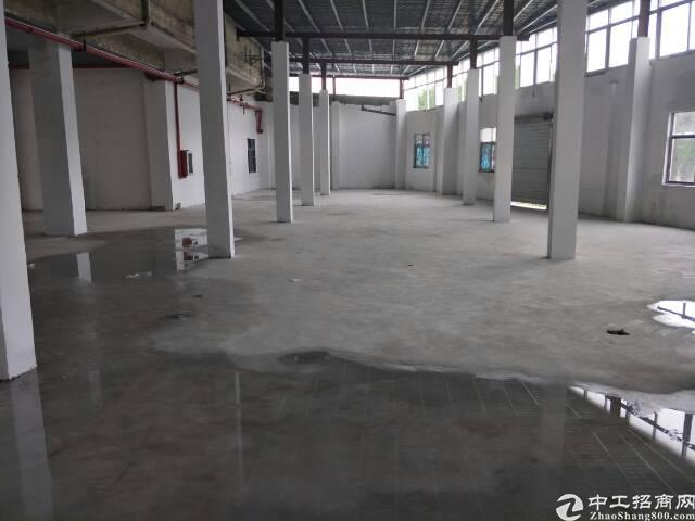 龙岗嶂背标准厂房一楼700平方精装修