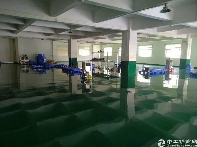 茶山工业园村委厂房1-2F 2700㎡,劲爆价10