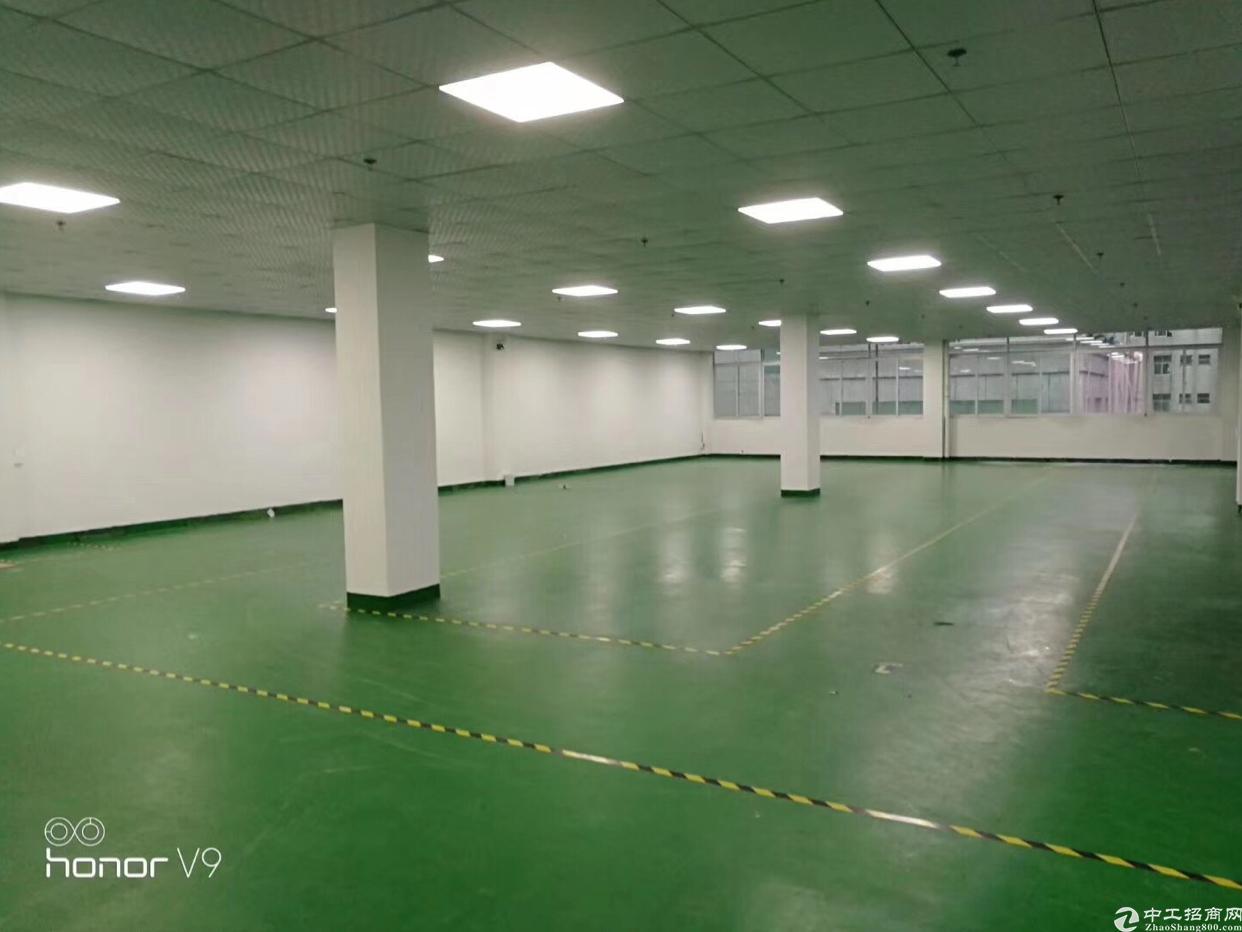 厂房在黄陂前川,面积2000平方,有现成办公室,精装修厂房出-图4