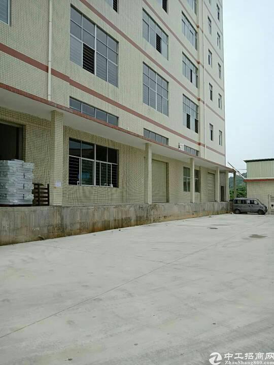 惠州高速出口全新厂房10元招租大小分租