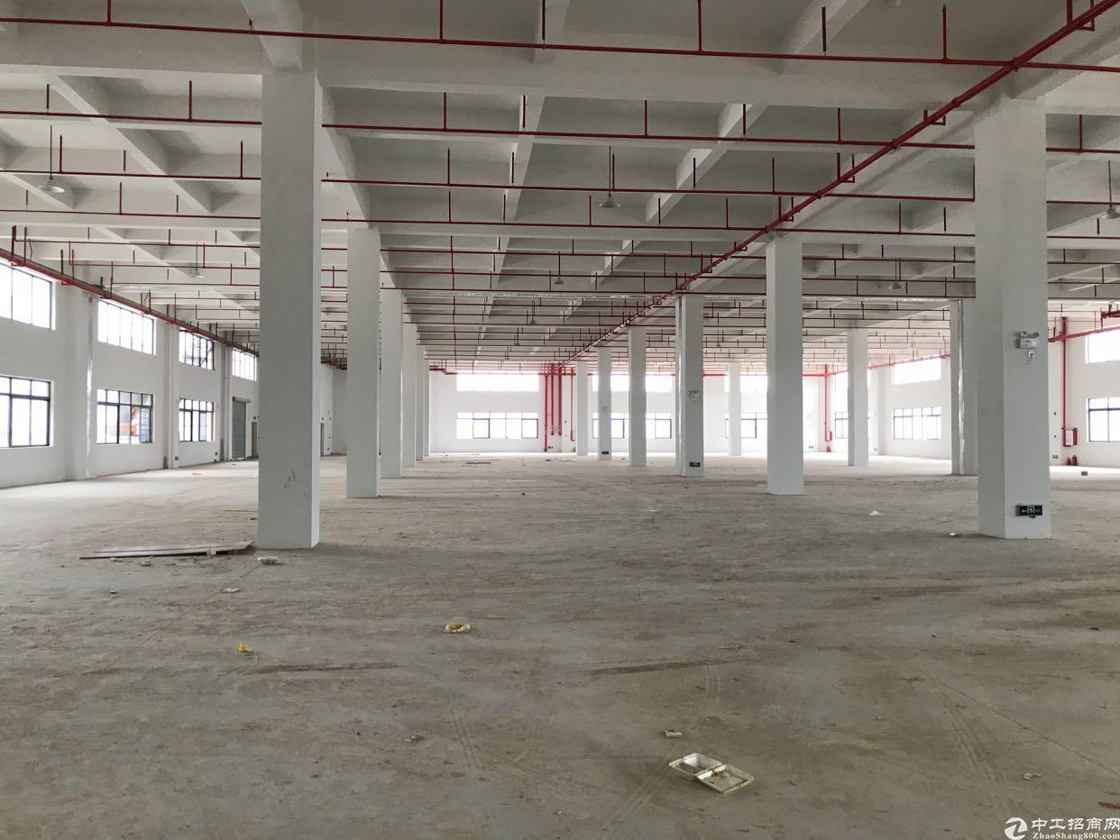 惠州沙田全新厂房5000平方-图2