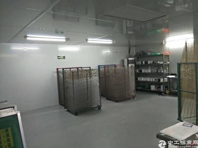 镇中心无尘车间450平,带精装修,有现成办公室,标准电梯