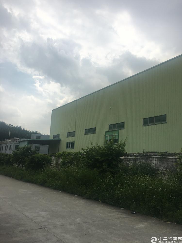 清溪10米钢构,建筑4050平方米,售4000万元