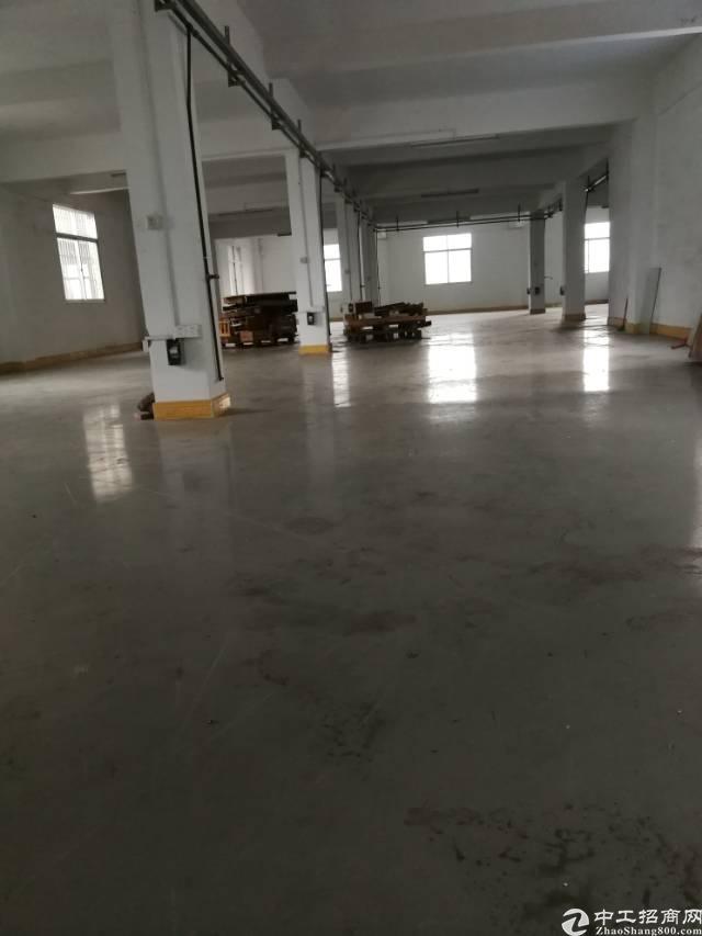 惠州惠城区小金口新出新出工业园1000平标准厂房出租