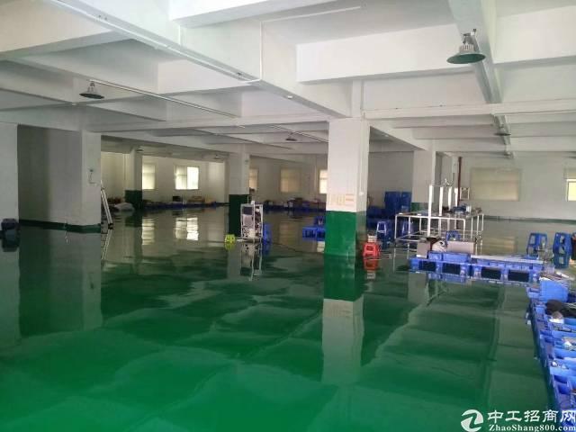 茶山镇新出厂房,交通便利