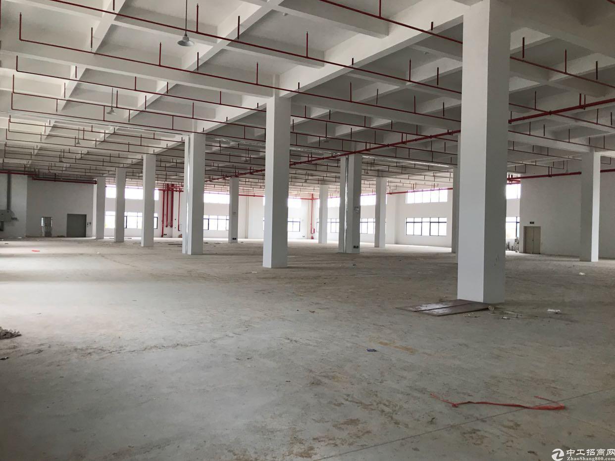 惠州沙田全新厂房5000平方
