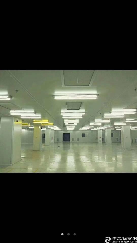 寮步新出独门独院12000平原电子厂房