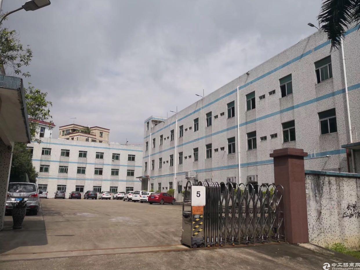 龙岗中心城嶂背二村仓库500平米