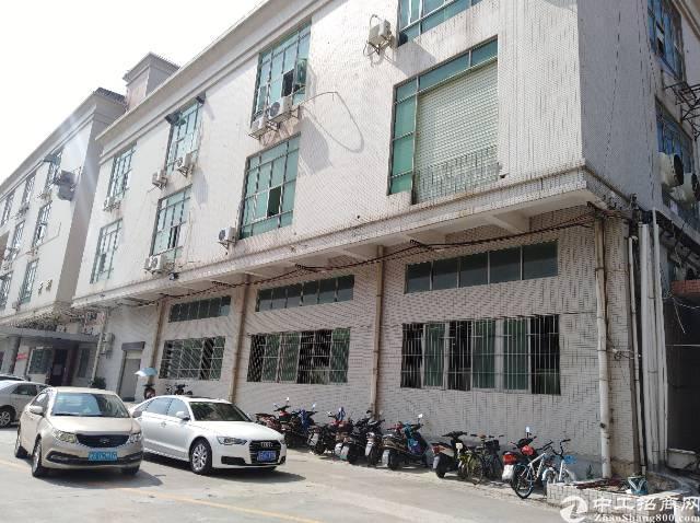 沙井共和新出原房东一楼六米高1160平米带装修厂房出租