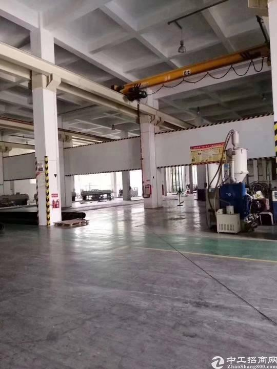 深圳坪山原房东按实际面积出租4000平米
