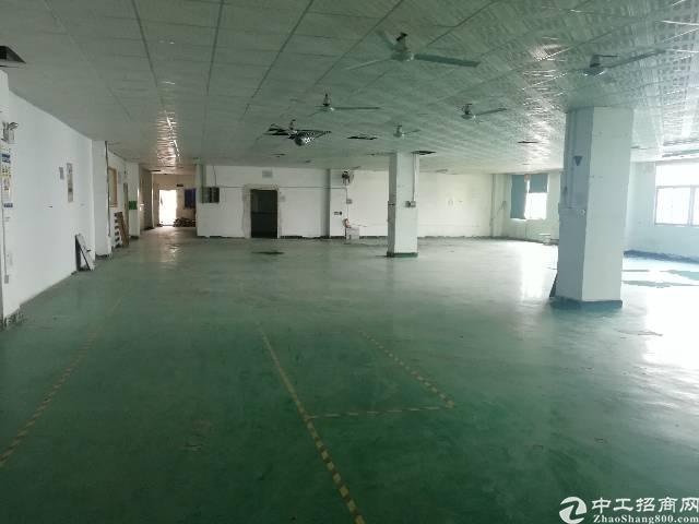松岗14元厂房实业客分租1000平米出租合同3-5年一签