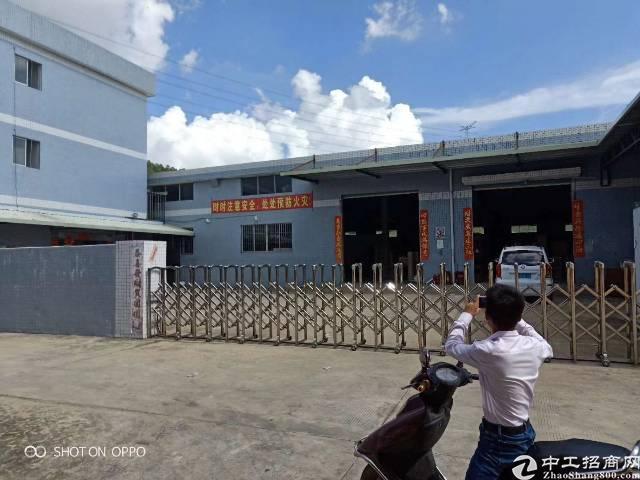 独门独院单一层钢构厂房5000平米招租