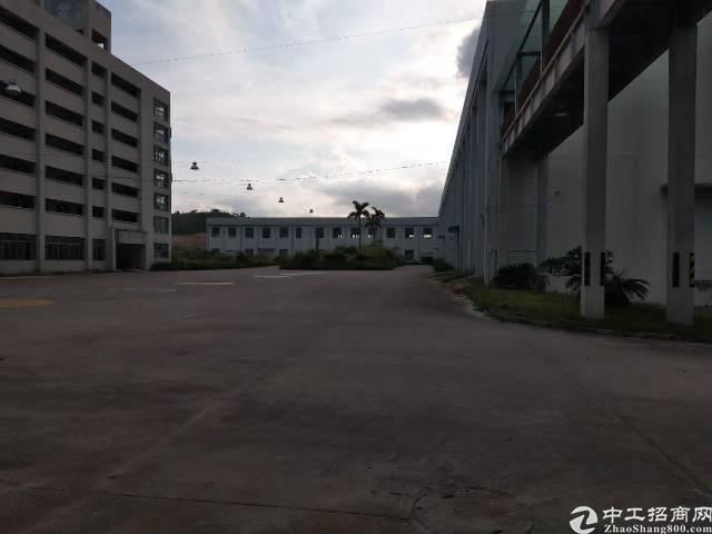 大亚湾独门独院标准红本厂房50000平米招租