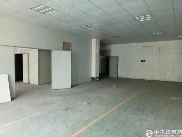 惠州大亚湾黄金地段楼上厂房出租只需12元每平