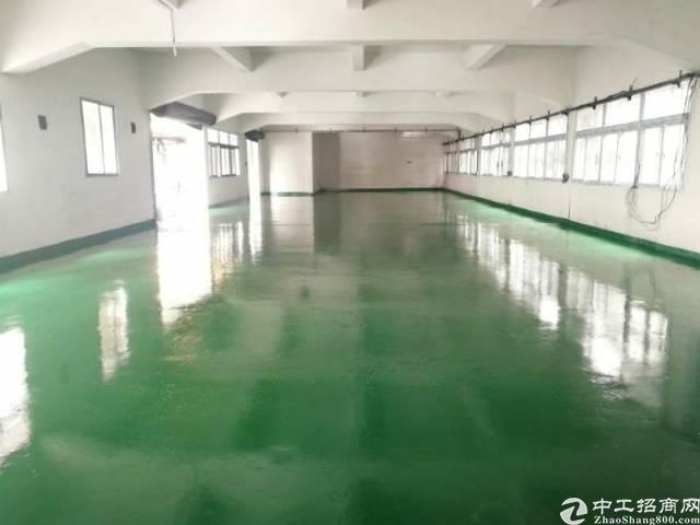 国庆特惠19.8   省道边精装修独院2800平