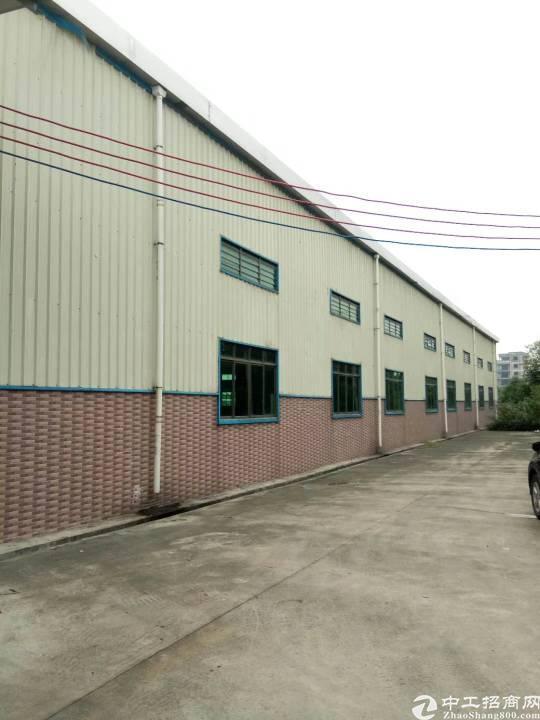 望牛墩新出原房东独栋仓库,3500平方,门口就是大马路