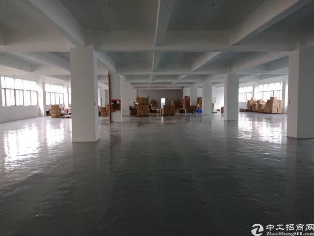 布吉丹竹头新出3900平厂房,原房东,有宿舍食堂,空地大