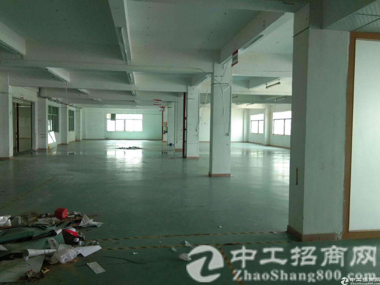 观澜 福民工业园区空出5楼900平