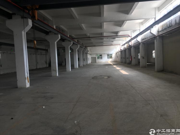 平湖一楼2000平厂房出租-图3