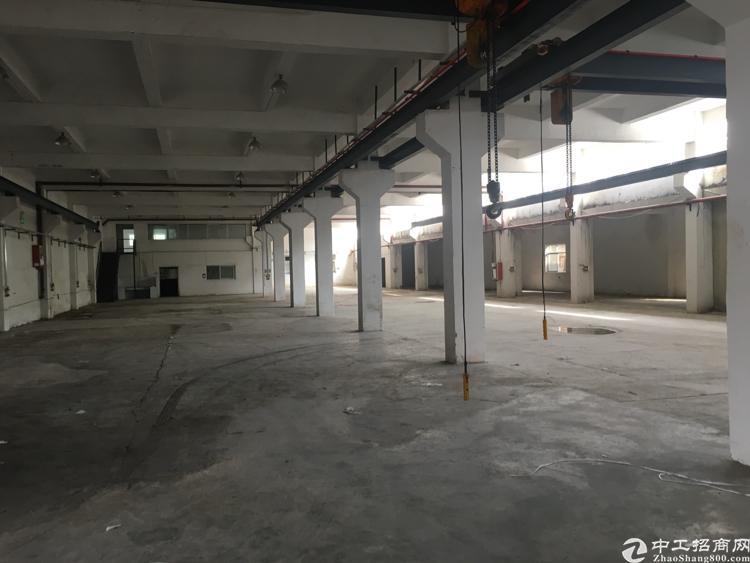 平湖标准一楼超高楼层带行车厂房