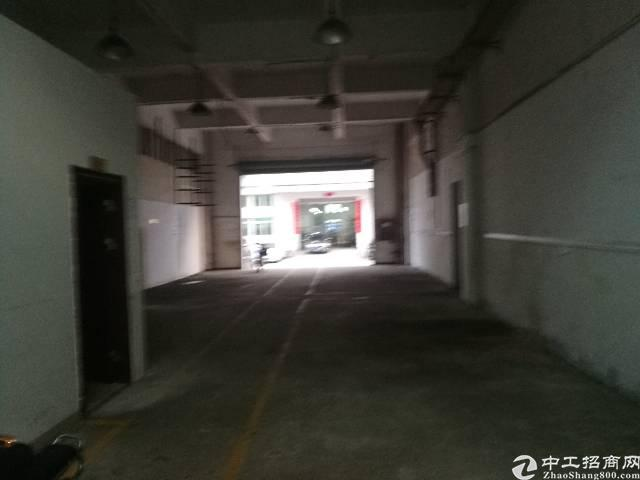 龙华汽车站附近一楼250平厂房出租