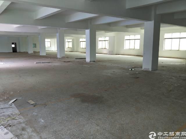 横岗高薪产业园招租2-3楼每层1380平-图4