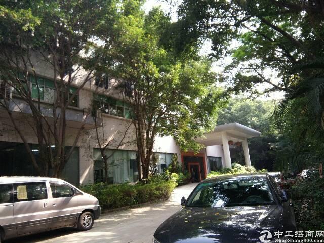 李松蓢一楼带装修的厂房1000平米招租