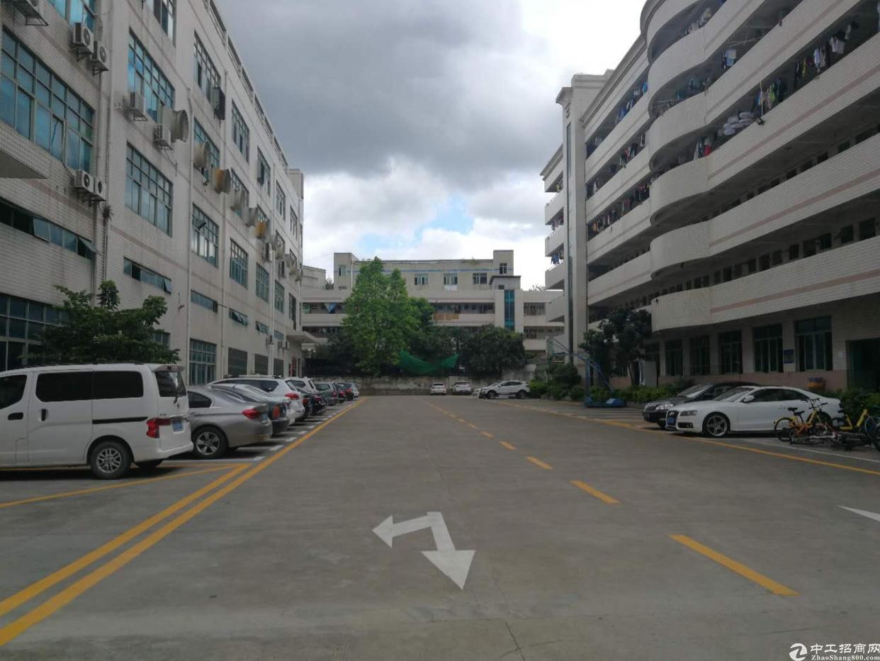 平湖华南城周边一楼1360平,价格38+3元。面积实在
