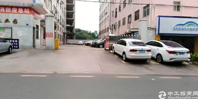 龙华布龙路白云山附近,300平无公摊厂房出租,10块一平方