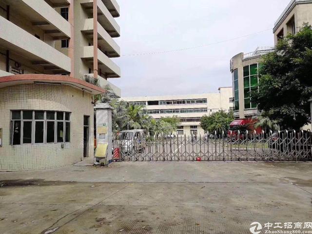 凤岗雁田原房东15000平米花园式红本独院厂房出租