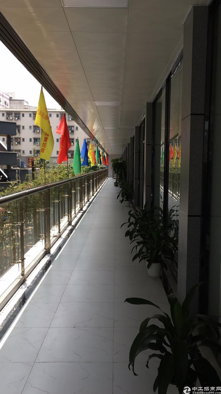 龙华和平路边上地铁楼300米全新装修写字楼200平出租