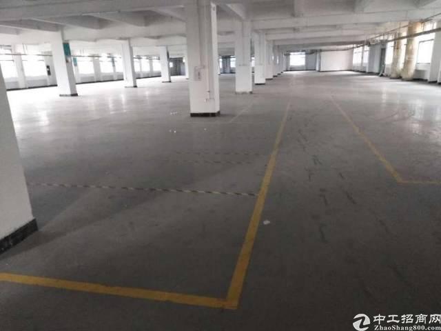 坪地低碳城楼上厂房300平方