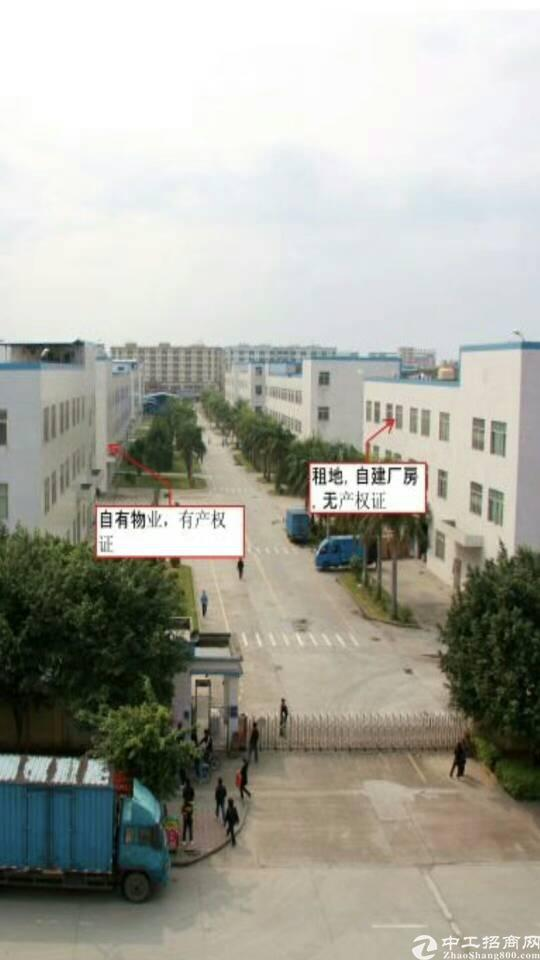 出售福永红本大面积独门独院厂房。适合自用投资