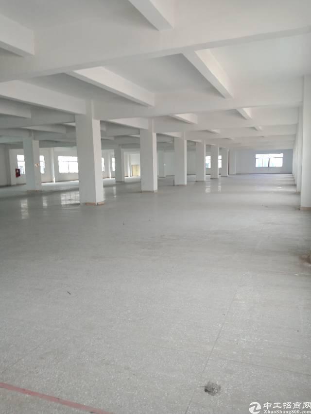 布吉李朗新出5200平厂房,大小可分租,合同长
