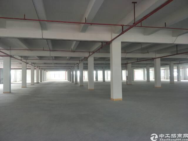 原房东整租独门独院厂房5800平方