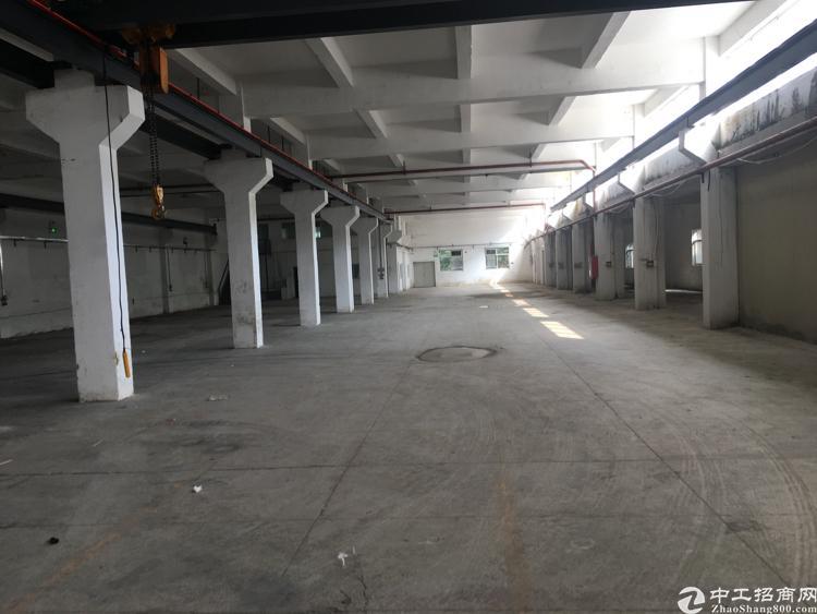 平湖一楼2000平厂房出租-图2