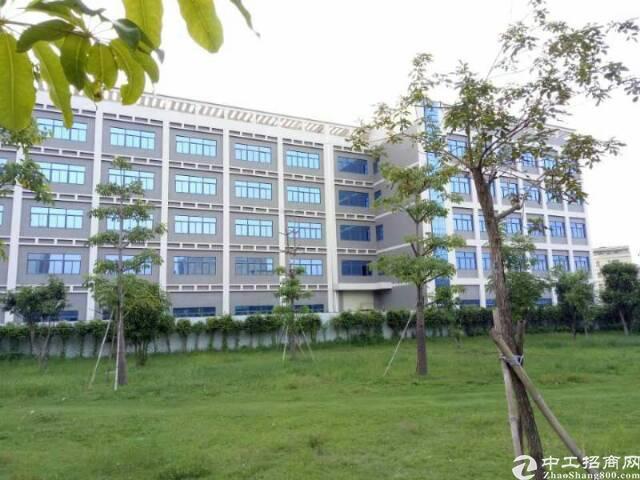 龙岗坪山大工业区旁 全新独门独院厂1-5层15000平方出租