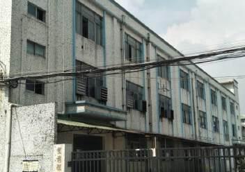 光明玉律独院厂房出租图片2