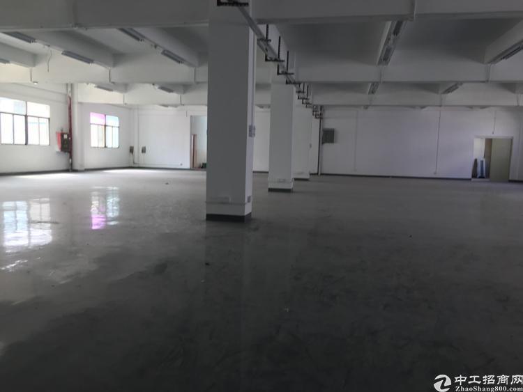 平湖一楼2000平厂房出租-图6