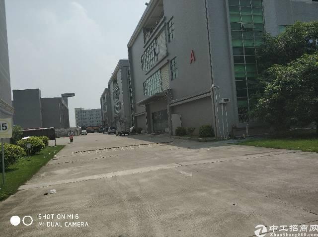高埗镇标准万博app官方下载3楼实际面积出租
