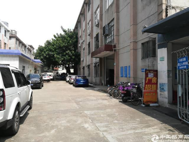 宝安电子城附近新出一楼1000平稀缺厂房出租