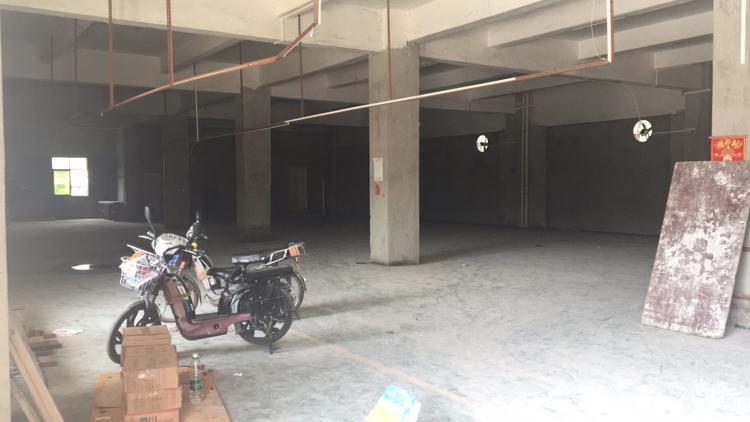 新出独门独院标准厂房,一层1300方,急租-图2