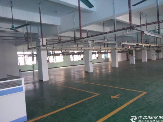 寮步西溪工业园标准厂房分租