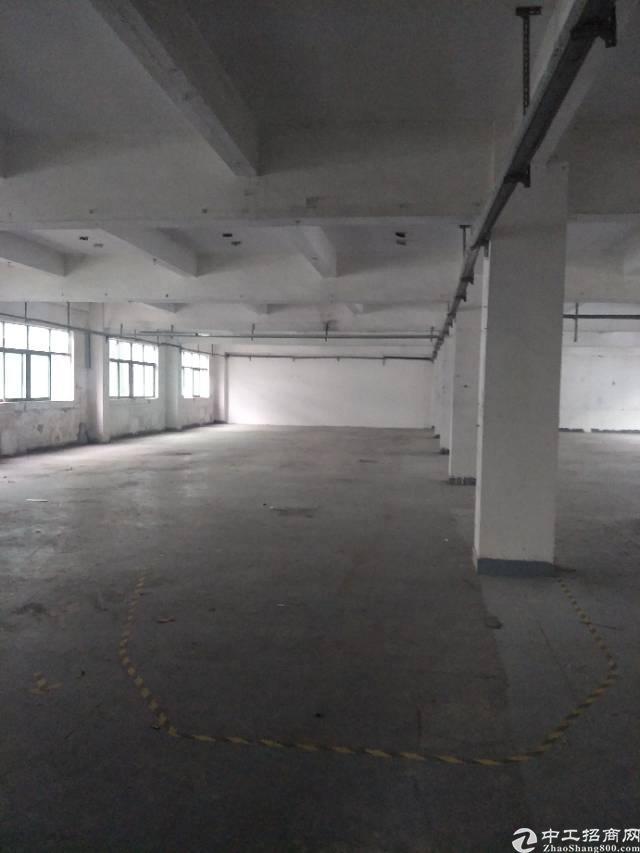 龙岗龙东标准厂房一楼,原房东带现成装修