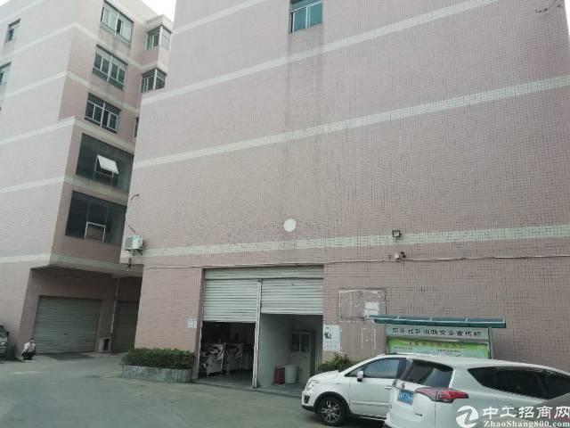 坪地坪西标准厂房2楼15000平方可分租