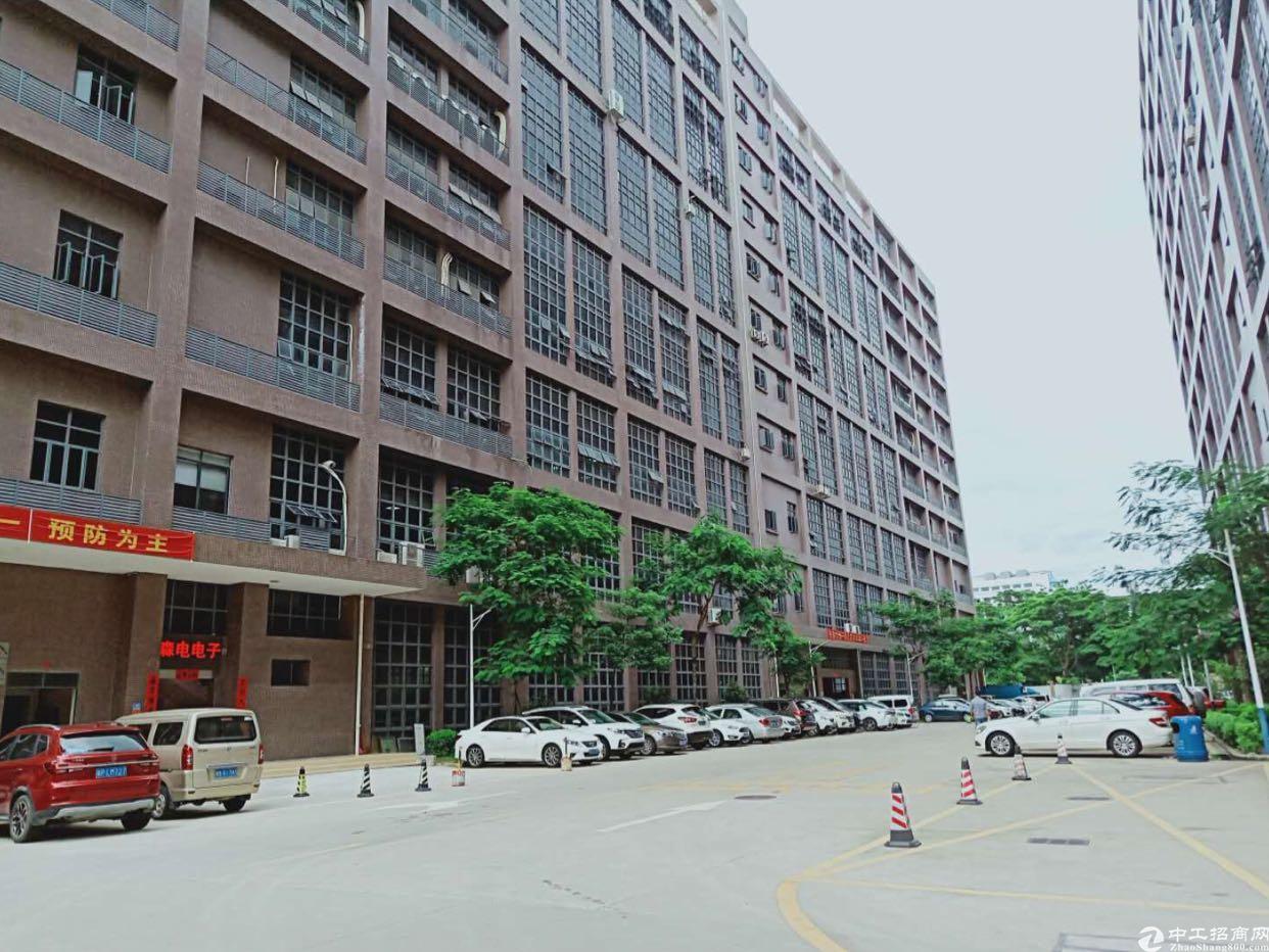 原房东红本广深高速口34000平米厂房出租
