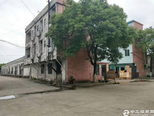 万江经典小独院厂房出租2180平方单一层-图2