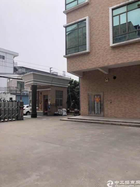茶山新出原房东独院分租一楼800平方