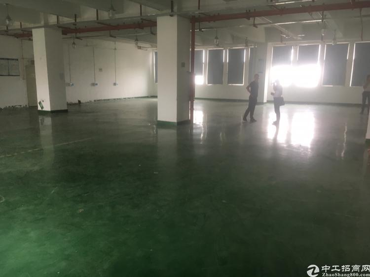 福永和平新出楼上1800平方厂房出租-图5